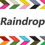 Raindrop (4)